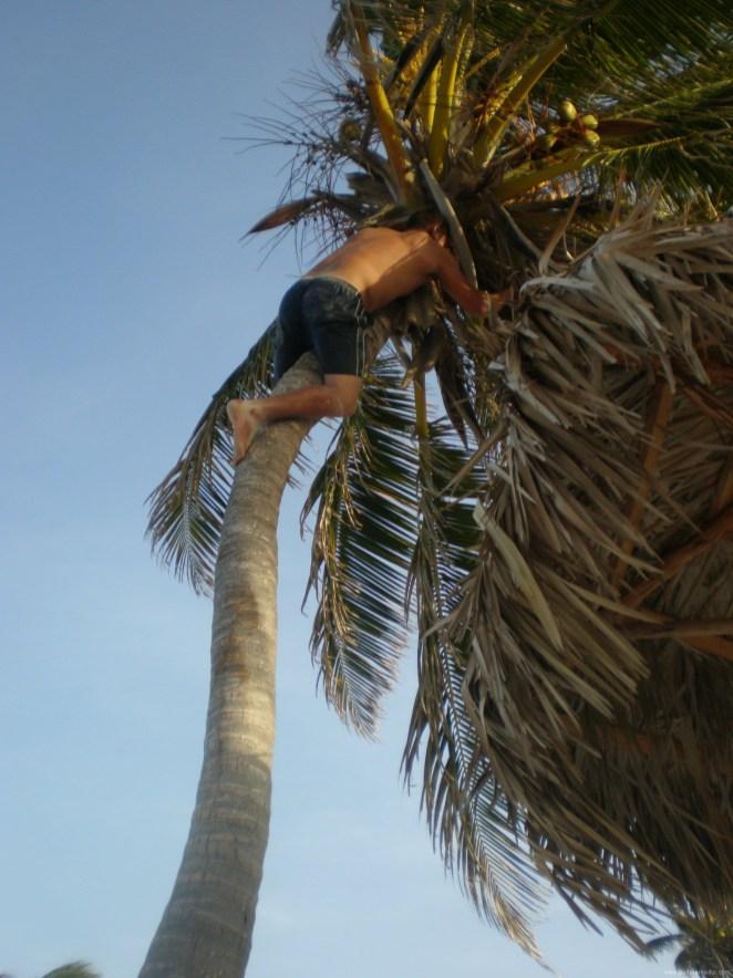 14 CUBA SANTA LUCIA