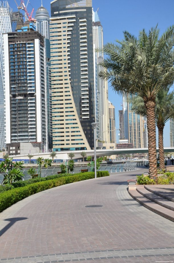 Dubai Marina 37 1
