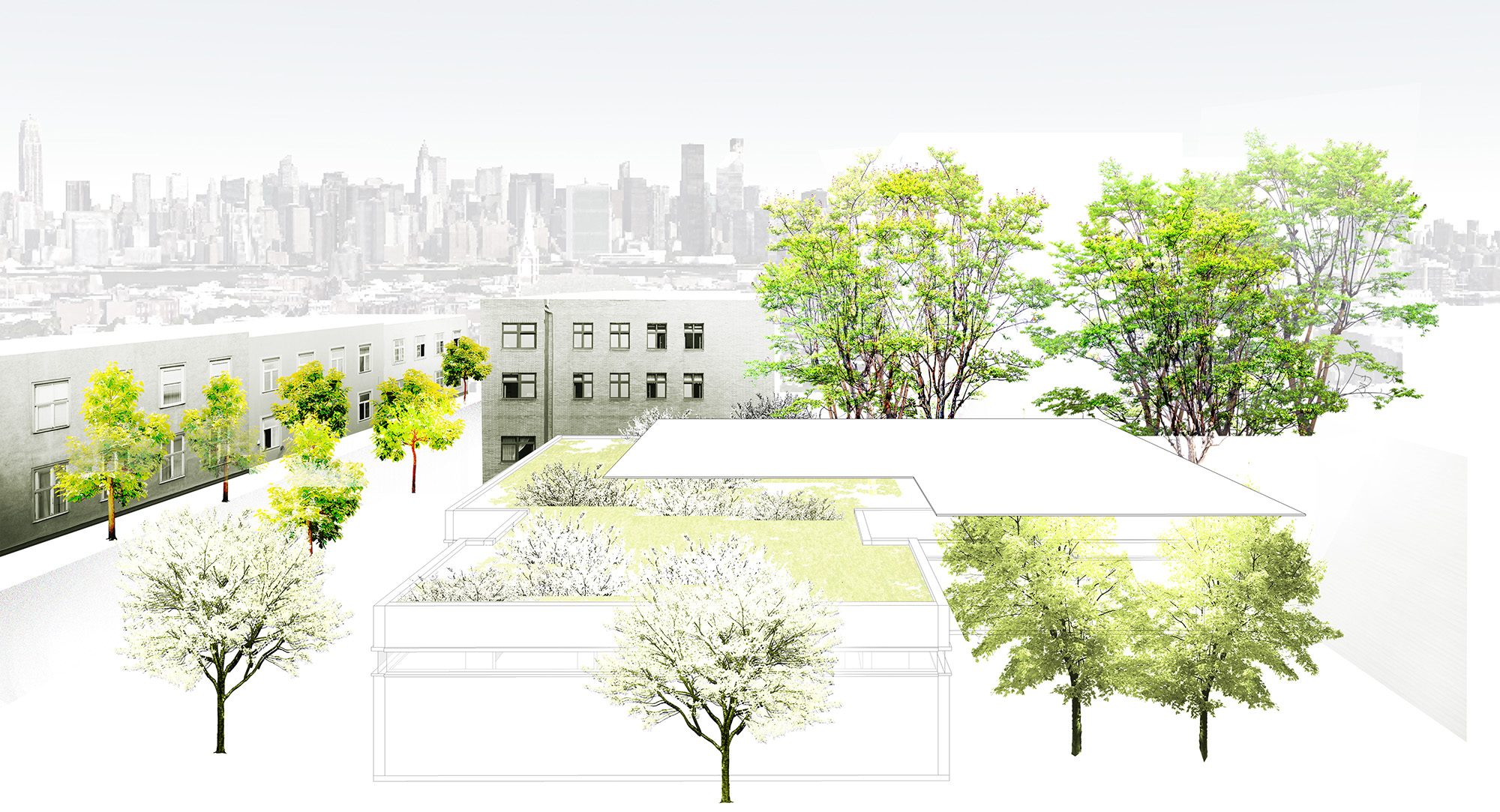 library as a park