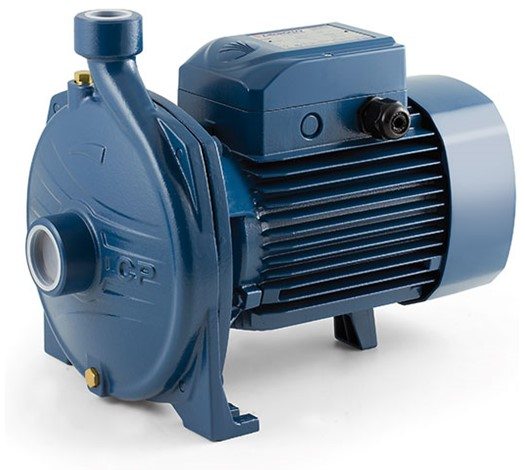 Electric Water Pumps Pedrollo Pumps South Africa