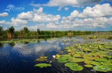 Obiective si atractii turistice in judetul Tulcea