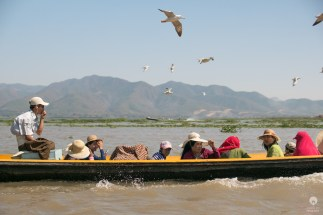 Hitchcock on water - Inle Lake