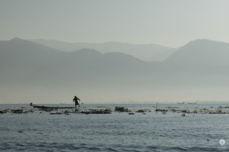 A fishermans friend - Inle Lake
