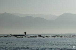 A fishermans friend - Inle Lake
