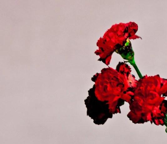 Love In The Future Album Cover