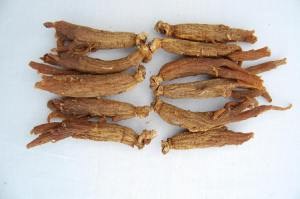 Korean Red Ginseng may have properties useful in treating ED.