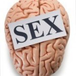 better sex brain