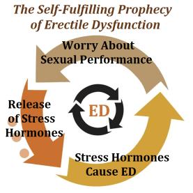 erectile dysfunction self-fulfilling prophecy