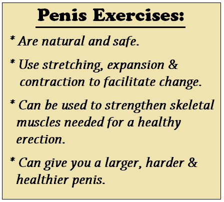 penis exercises overview