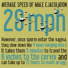 ejaculation speed