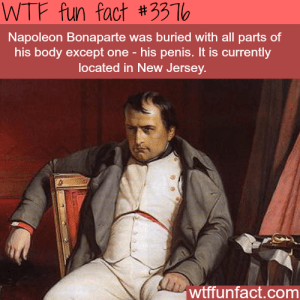 Napoleon's penis - WTF Fun Facts Penis Edition