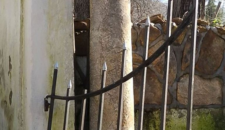 Мермерен столб со капител од манастирот