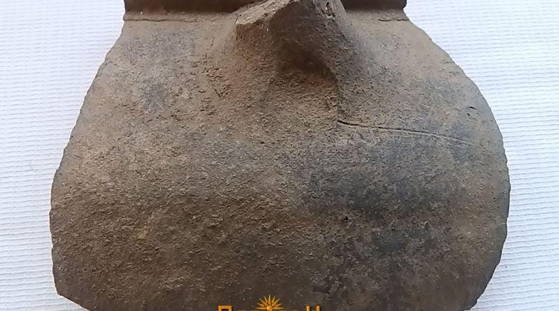 Фрагмент од сад со фрагментирана рачка
