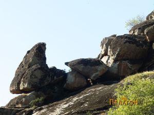 Комплексот од карпи заедно со карпата - менхир