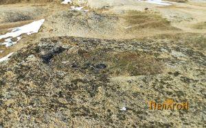 Гроб во карпа во непосредна близина на гробниците