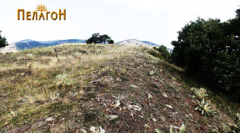 """На линијата на заштитниот ѕид на """"Трновски Рид"""""""