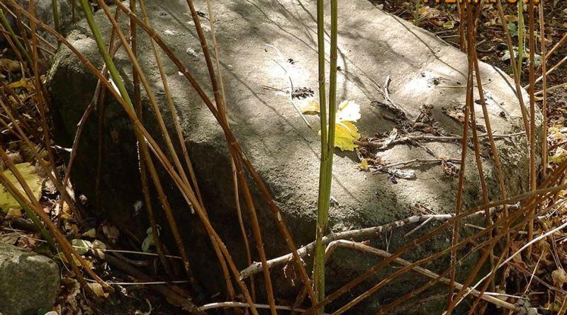 Камен блок на местото на ископувањето во селото 2