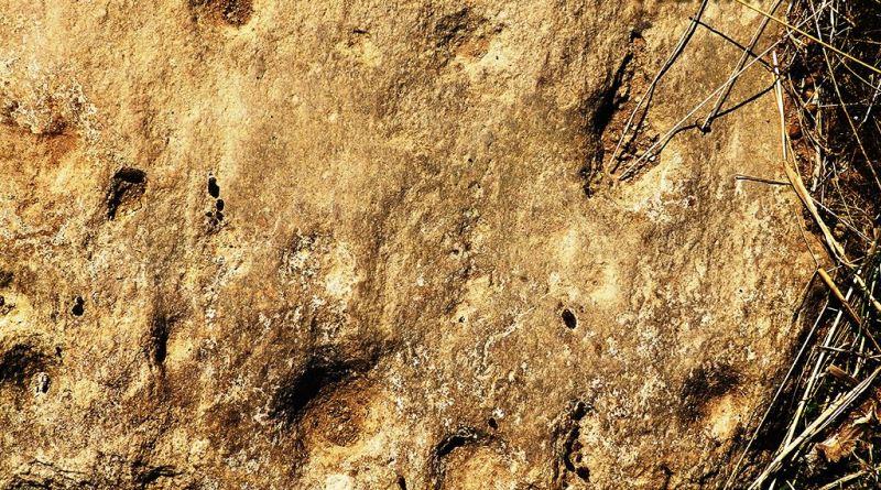 Камен блок со симболика на Кале 1