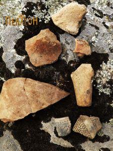Група фрагменти од керамички садови 3