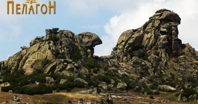 """Карпата """"Лав"""" и карпа во форма на желка од југоисток"""
