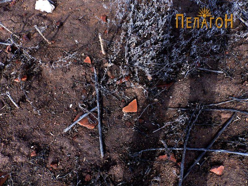 По површината на теренот - голем број фрагменти од керамички предмети
