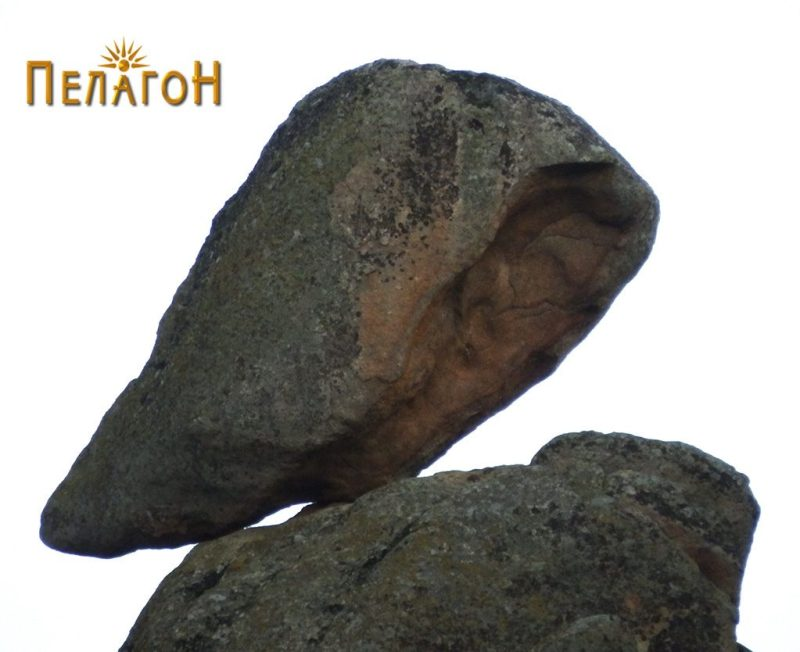 Карпа со форма на птица од врвот