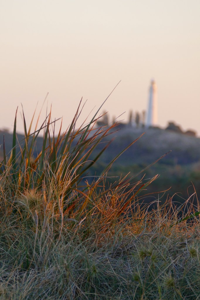 Dune vegetation, above Parakeet Bay, looking inland to Wadjemup Lighthouse
