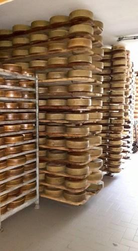 casa-del-formaggio-pellizzano-prodotti-tipic