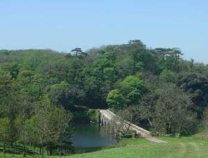 Stackpole National Trust Woodlands and Eight Arch Bridge in the Pembrokeshire Coast National Park