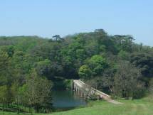 stackpole-8-arch-bridge-large