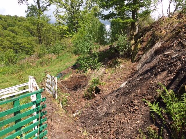 Slope and rock face, now mostly cleared of rhodo