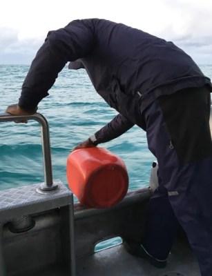 mergulho-com-tubarão-03