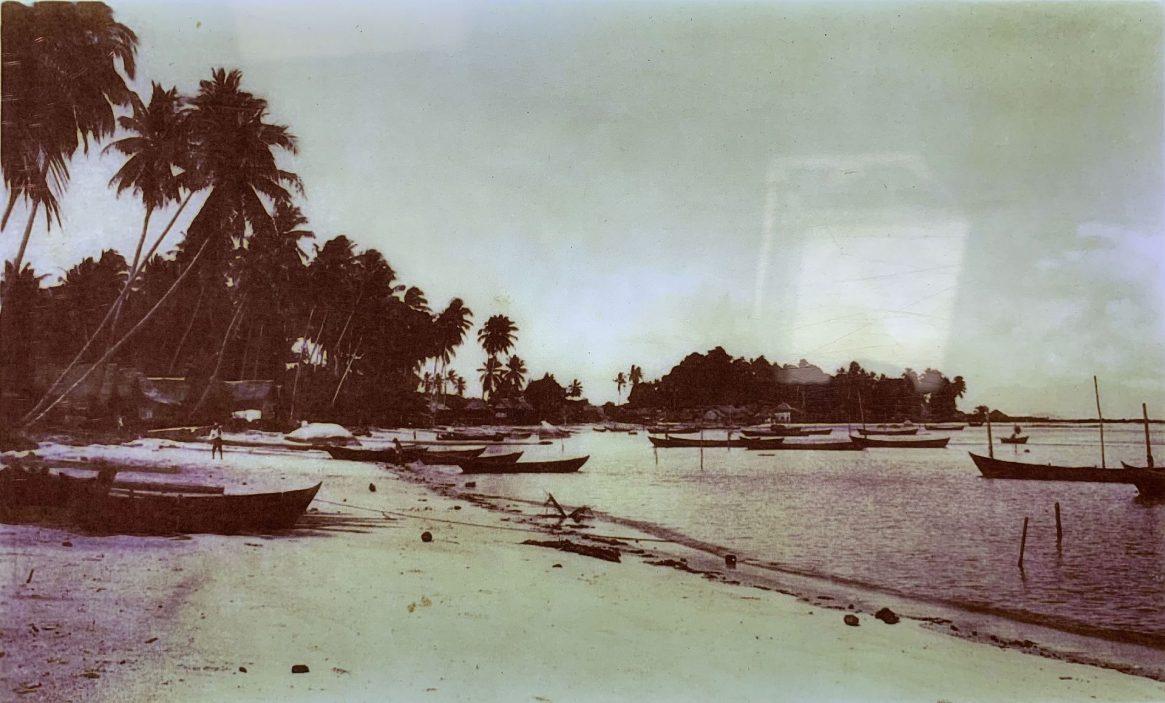 Seashore Tanjung Tokong