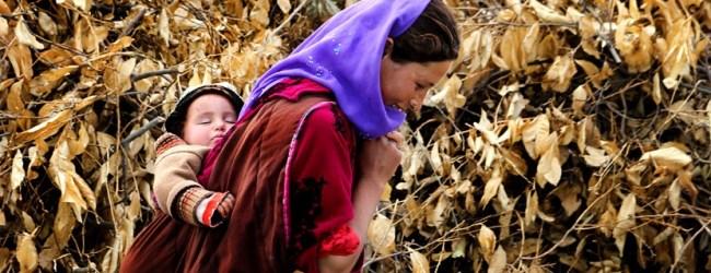 Köşe Yazısı | Anne ile Evlat Farkı – Zeynep Turanlı