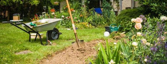 Emekliler İçin Bahçe Bakım Kursu Kayıtları Başlıyor