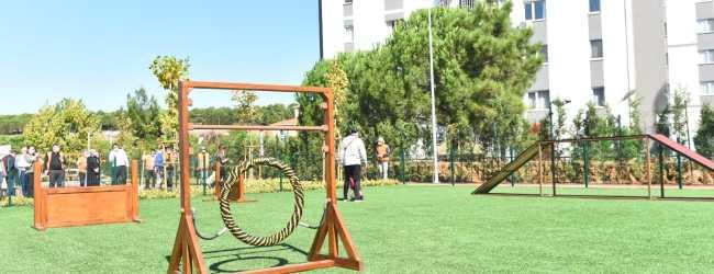 Neşeli Patiler Köpek Eğitim Parkı Açılıyor