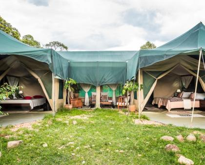 Losokwan Luxury Tented Camp