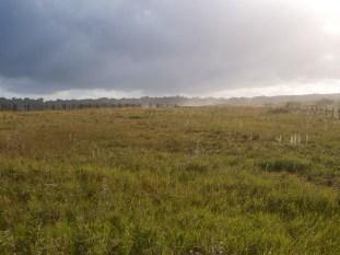 Marais de Suscinio