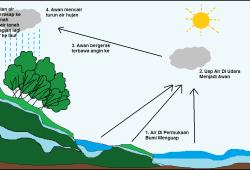 Siklus Air Tanah dilengkapi: Pengertian, Gambaran, Manfaat dan Upaya Pelestariannya