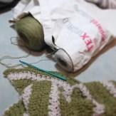 Test Crochet Shawl