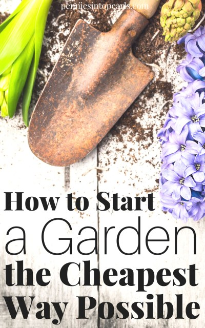 The cheapest tips on how to start a garden while pinching pennies! Find out where to get all the supplies for starting a garden for either FREE or super cheap! An extremely easy way on how to start a garden for beginners and tips that the most experienced gardener doesn't know!