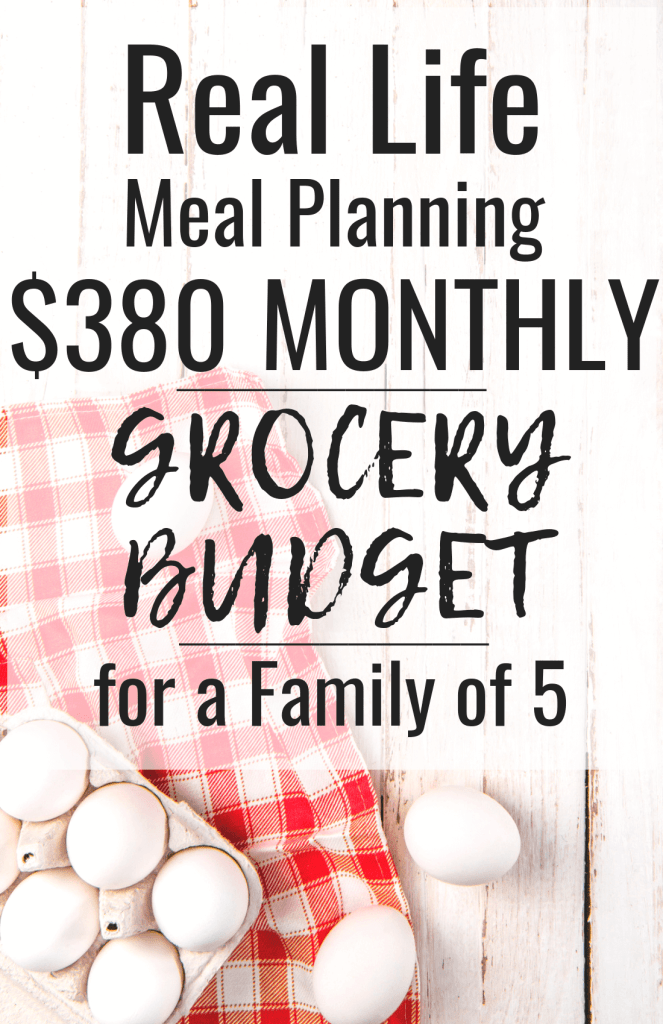Use this family budget meal plan this November and feed your family for under $520! You will start to save money on groceries as soon as you use this family budget meal plan!