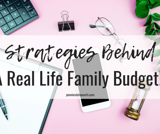 Is there an easier way to learn all the budgeting basics than to take a look into a real life budget from another family? I don't think so. Seeing how another family is making it work in real life offers so many useful budgeting tips! In this VIDEO you will learn budgeting for beginners tips that will help you start reaching your family's financial goals!