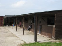 Large Airy Stables with rubber matting for your horse at livery in Harrogate with Pennine View Stud