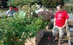 Conestoga gardens 9-11-13
