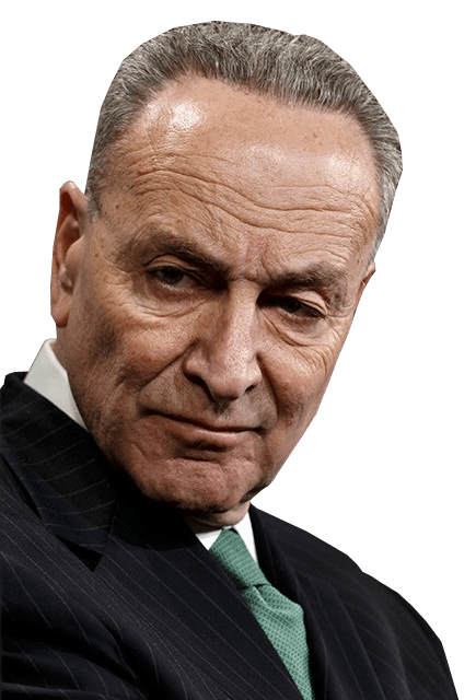 Take Action: Schumer Moving Fast on Red Flag Gun Confiscation!