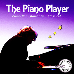 PNBT 1010 PIANO PLAYER