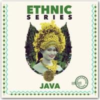 PNBT 1072 Ethnic Series - Java