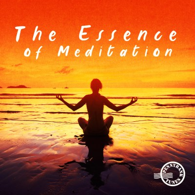 PNBT 1142 THE ESSENCE OF MEDITATION