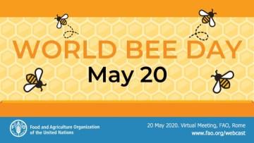 world-bee-day-20-may